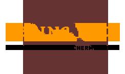 Logo von Regina Lotz